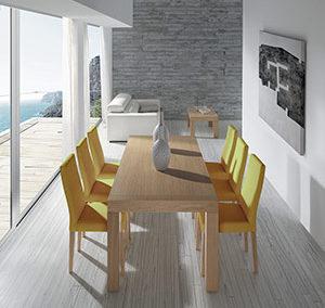 Mesa 248 L – XS y silla 555